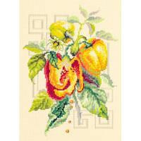 Набор для вышивания, Чудесная игла «Перец»