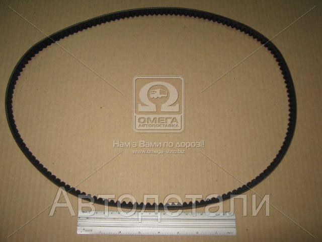 Ремень клиновой AVX13X1200 (пр-во DONGIL) 13X1200