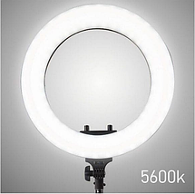Профессиональная кольцевая лампа для фото и видео съёмки 45 см. диаметр LED Soft Ring Light HQ-18, фото 2