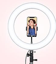 Кольцевая лампа RING SUPPLEMENTARY LAMP Nonpolar Dimming 36см с держателем для телефона, фото 3