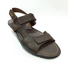Чоловічі шкіряні сандалі (Великих розмірів) р. 46 остання пара
