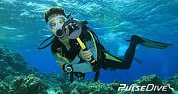 Nokta Pulse Dive - підводний металошукач і пинпоинтер, фото 2