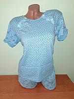 Домашний женский комплект, пижама для кормящих мам, размер 50(L) хлопок