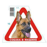 """Наклейка """"Собака в машине"""" С-3 (треугольник) (С-3)"""