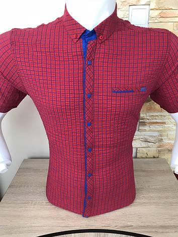 Рубашка короткий рукав Stendo жатка, фото 2