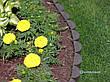 """Садова декоративна огорожа - 3 метри в упаковкі для клумби """"Бордюр садовий КЛУМБА""""  -  від виробника, фото 2"""