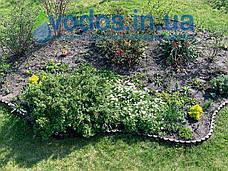 """Садова декоративна огорожа - 3 метри в упаковкі для клумби """"Бордюр садовий КЛУМБА""""  -  від виробника, фото 3"""