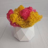 SN Кашпо Грани со мхом стабилизированным желтый и розовый - оригинальный подарок для женщины