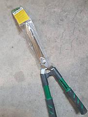 Ножиці садові для догляду за кущами
