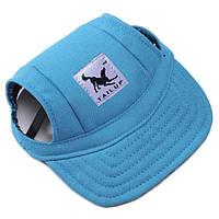 Кепка для собак, синій