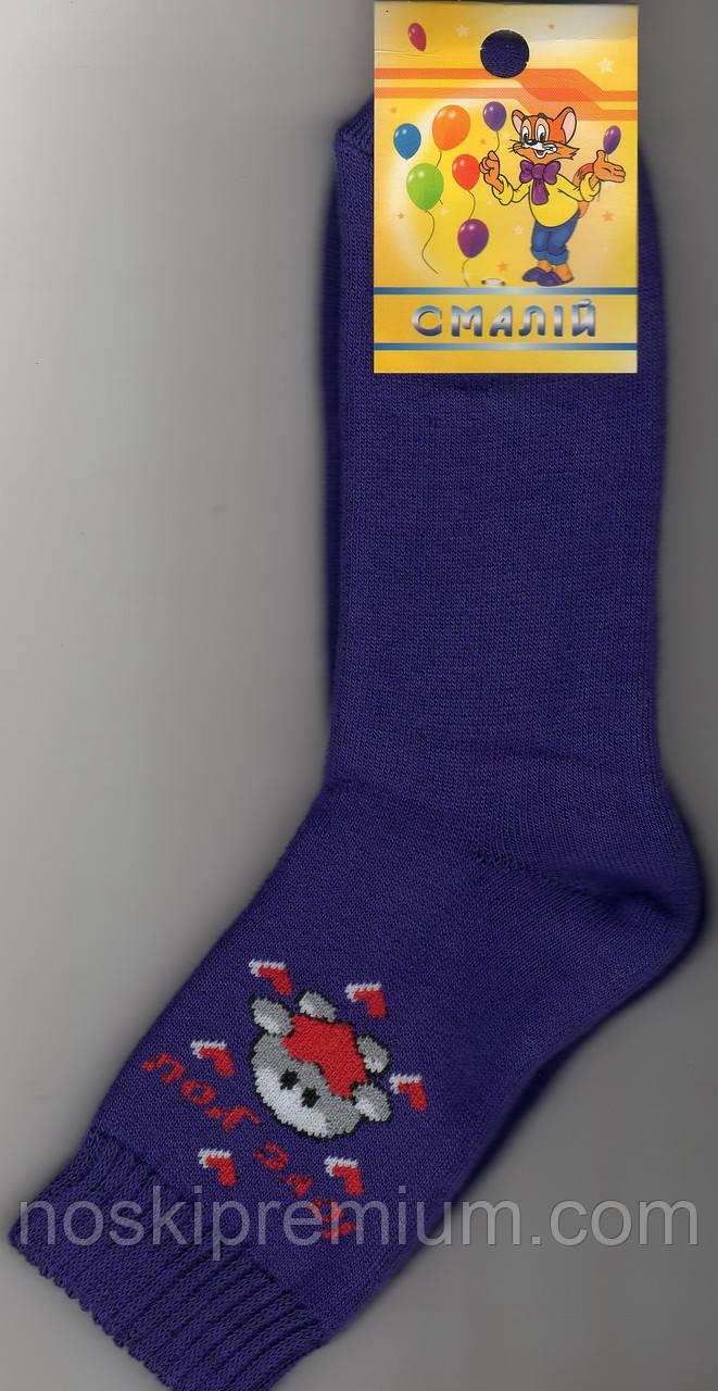 Носки детские х/б махровые Смалий, 22 размер, рисунок 36, 10540