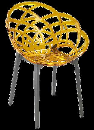 Крісло Papatya Flora прозоро-жовте сидіння, низ антрацит, фото 2