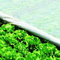 Агроволокно и сетка