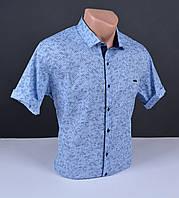 Мужская рубашка с коротким рукавом Grand Men синяя Турция 5033 размер L