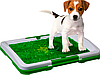 Комнатный туалет (лоток) для собак Puppy Potty Pad, фото 5