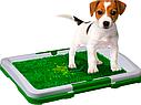Кімнатний туалет (лоток) для собак Puppy Potty Pad, фото 5