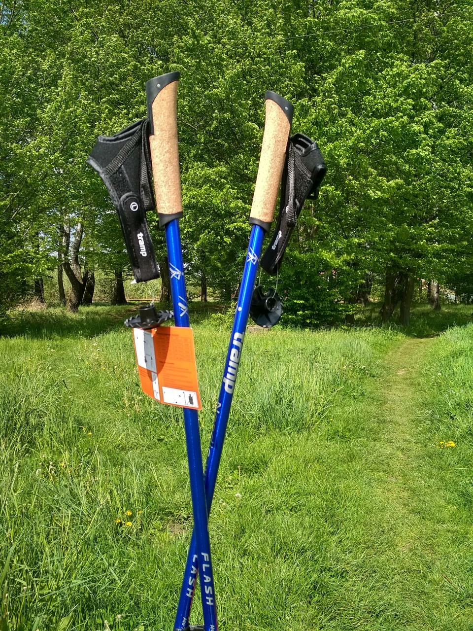 Палки для скандинавской ходьбы Tramp Flash. Палки для скандинавской ходьбы