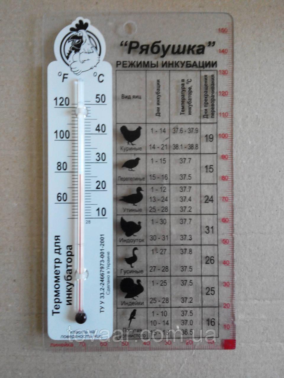 Термометр для инкубатора