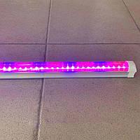 Светодиодный фито светильник для растений Ledmax 1200мм (2835-1.2FS)