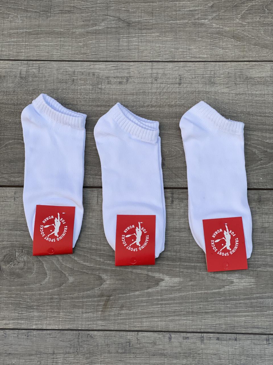 Жіночі носки Sport sockі шкарпетки стрейчеві короткі розмір 36-39 12 шт в уп Білі