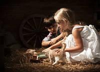 """Фото открытка """"Дети с котятами"""", фото 1"""