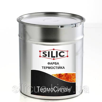 Краска для печей, каминов, мангалов и BBQ ТермоСилан (1кг), фото 2