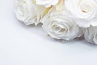 Стандарт роза Белая, фото 1