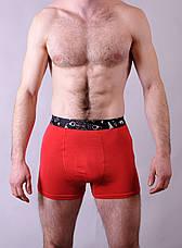 Чоловічі боксери Redo (бамбук) (M - 3XL), фото 3