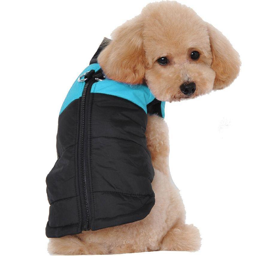 Жилетка для собак «Спорт», голубой, одежда для собак мелких, средних, крупных пород