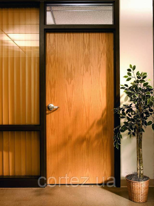 Двері в офіс