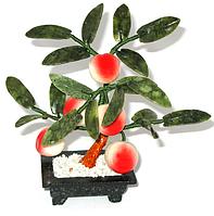 Персиковое дерево 5 персиков
