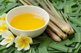Citronella Oil Масло цитронеллы