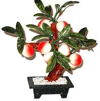 Персиковое дерево 8 персиков