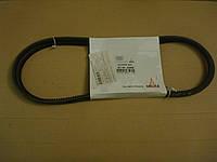 Ремень клиновой в комплекте Deutz 01182068, фото 1
