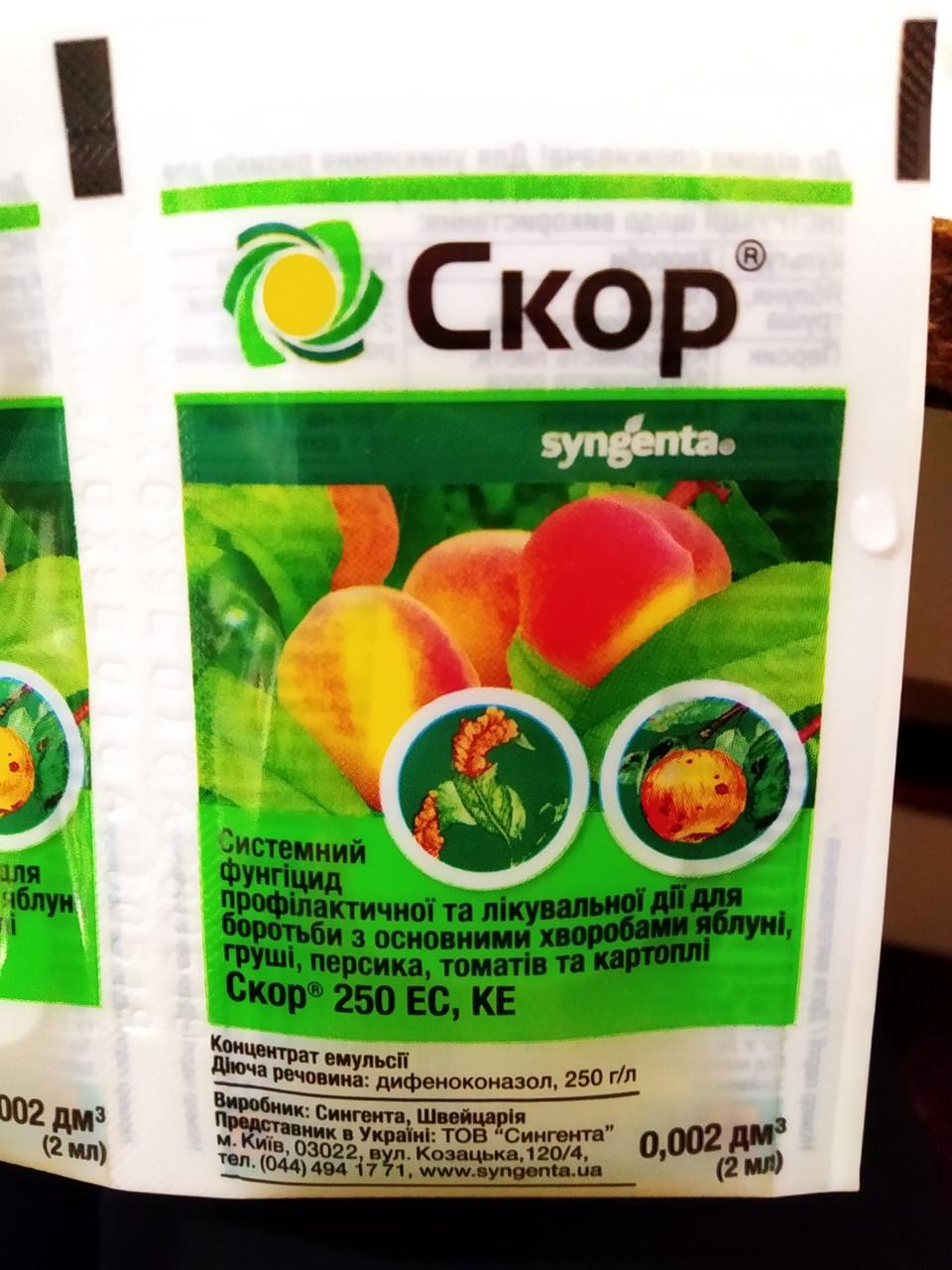 Системный фунгицид для яблони, персика, томата, картошки Скор 250 ЕС, КЕ Syngenta, 2 мл Швейцария