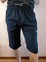 Чоловічі шорти великий розмір