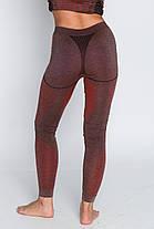 Женские термоштаны с шерстью альпаки HASTER ALPACA WOOL зональное бесшовное шерстяное термобелье, фото 3