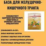 Поштучно FitLine Basics Бейсикс, витаминное питание, Германия - PM International пакетик-саше,12гр, фото 4