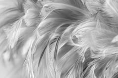 Набор: перья на бабл / Bubble серые, 12г