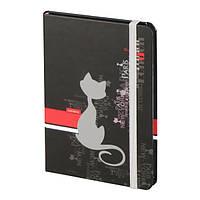 Книга Axent записная A6, 80арк., Catsline 8402-17-A