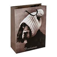 Пакет Axent бумажный подарочный Rachael Hale, 18х24см RH