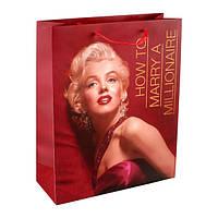 Пакет Axent бумажный подарочный Monroe, 26х32см МГ