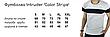 """Мужской летний комплект двойка Intruder Футболка """"Color Stripe"""" серая - черная + Шорты синие, фото 4"""