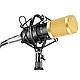 Профессиональный микрофон с фильтром Music M-800 студийный, фото 4