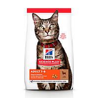 HILL'S SCIENCE PLAN Adult 31.7/20.0 сухой корм для взрослых котов (с ягненком и рисом) - 300 г