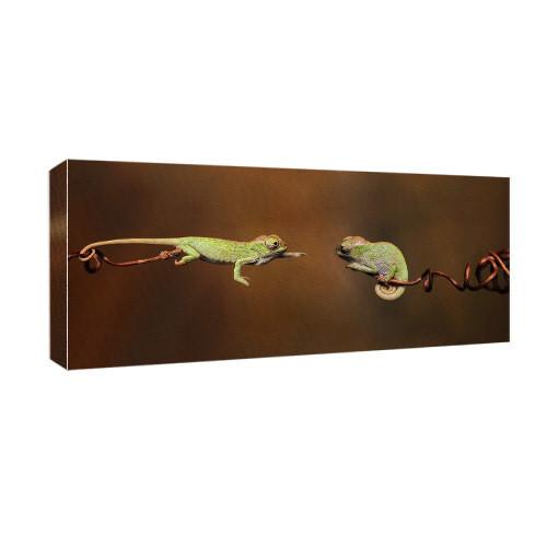 Картина на холсте Хамелеон 30х65 см (H3065_YM009)