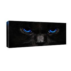 Картина на полотні 30х65 Погляд чорної кішки (H3065_YM018)