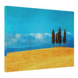 Картина на полотні 45х65 Дерева в полі (H4565_PRI003)