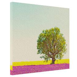 Картина на холсте Дерево в лавандовом поле 65x65 см (H6565_PRI002)