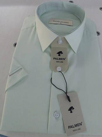 Однотонна сорочка з коротким рукавом Palmen, фото 2